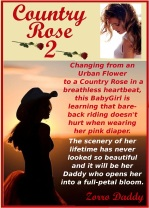 Country Rose 2